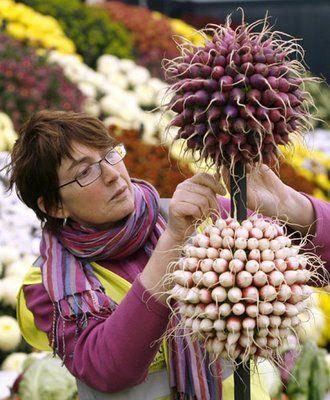RHS Chelsea Flower Show - radish topiary!