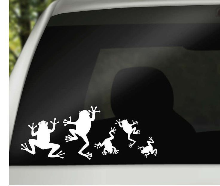 Best Vinyl Sticker Store Images On Pinterest - Vinyl stickers on cars
