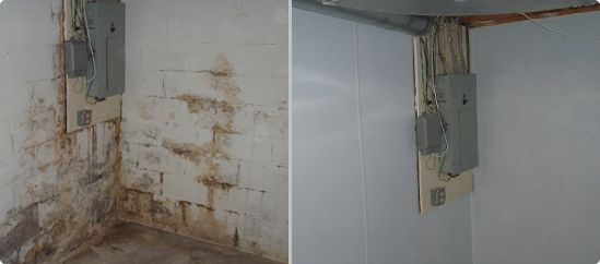 basement with mold and mildew into a safe clean and dry living space