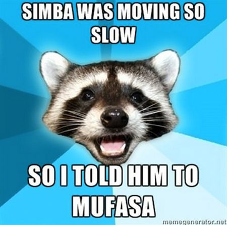 : Random Pictures, Bad Puns, Lame Puns, Raccoons, Even, Love Puns, Knock Knock, So Funny, Puns Coon