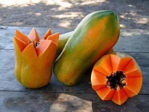 La papaya y sus propiedades...  http://desktopcostarica.com/articulos/la-papaya-y-sus-propiedades