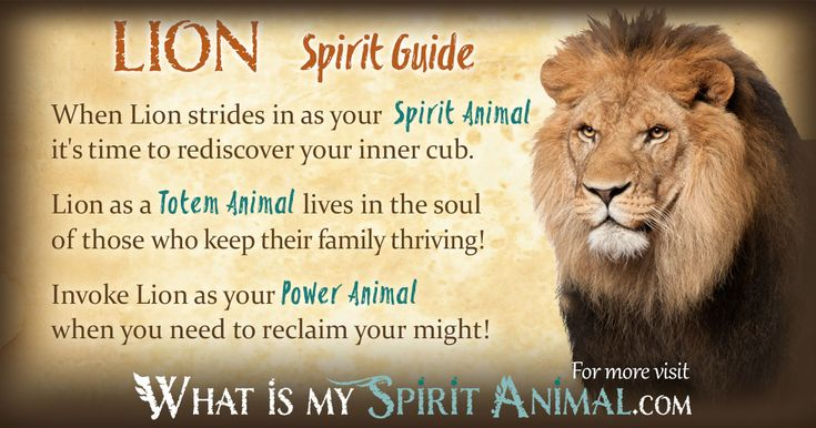 Lion Spirit, Totem, & Power Animal Symbolism and Meaning That's me!