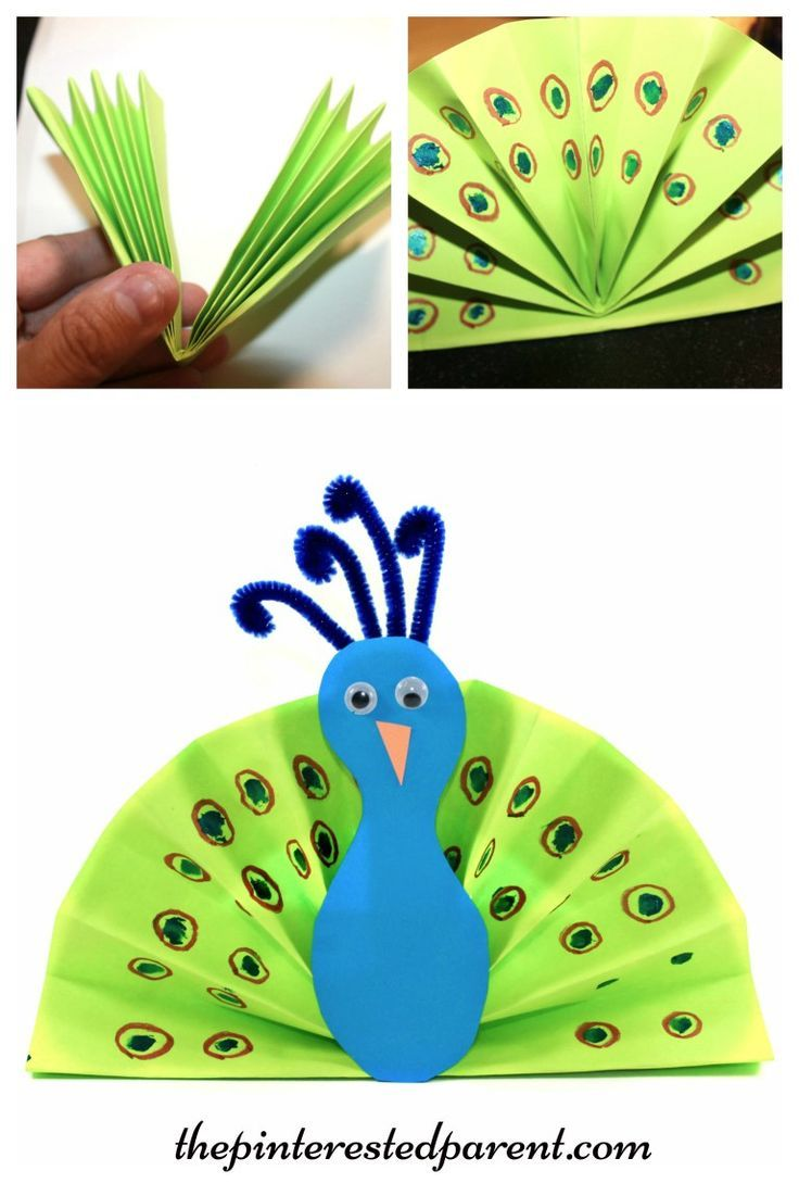 Construction paper fan peacock craft - kids arts and crafts