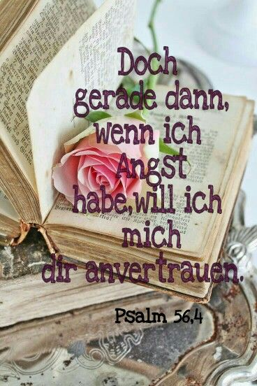 Wir können Gott immer vertrauen er ist bei uns!