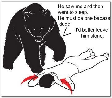 We know this... butPlays Dead, Laugh, Badass Dude, Funny Stuff, Humor, Bears Attack, Bears Logic, Funnystuff, Bears Safety