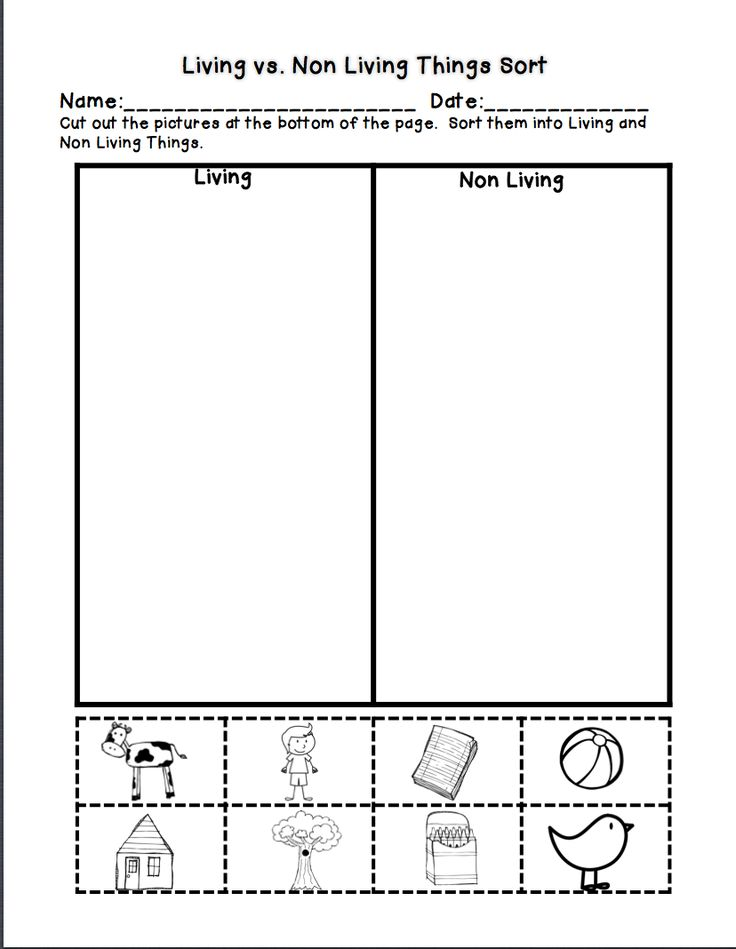 living and nonliving things worksheets for kindergarten living and non things. Black Bedroom Furniture Sets. Home Design Ideas