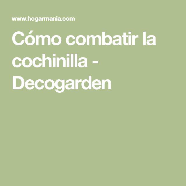 Cómo combatir la cochinilla - Decogarden