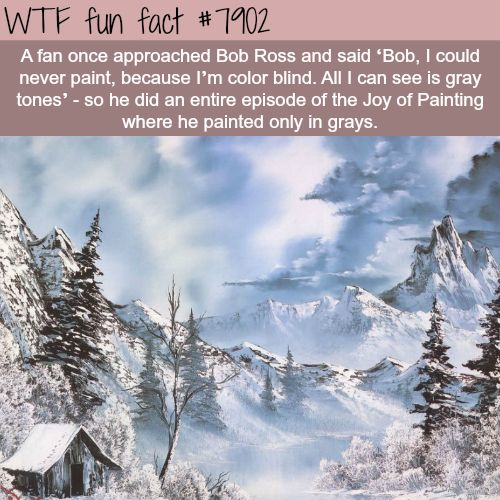 Shades of Grey by Bob Ross - WTF fun facts