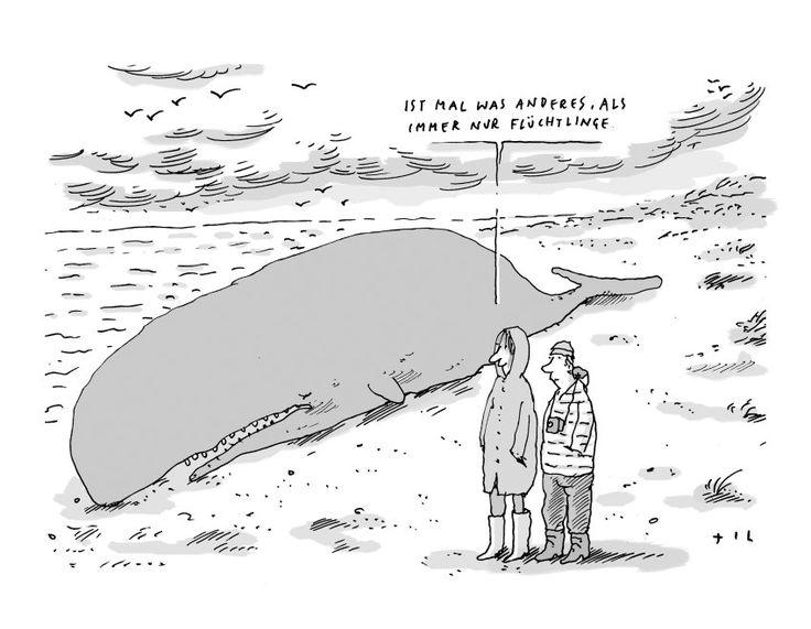 Image result for lustige karikaturen politik kostenlos