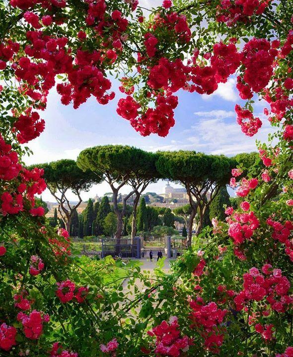 Hotels-live.com/pages/sejours-pas-chers - Follow @earth_destinations for amazing nature & travel photos @earth_destinations Roma #awesomedreamplaces Photo by @dino_presciutti Hotels-live.com via https://www.instagram.com/p/BFjUxb2lNtP/