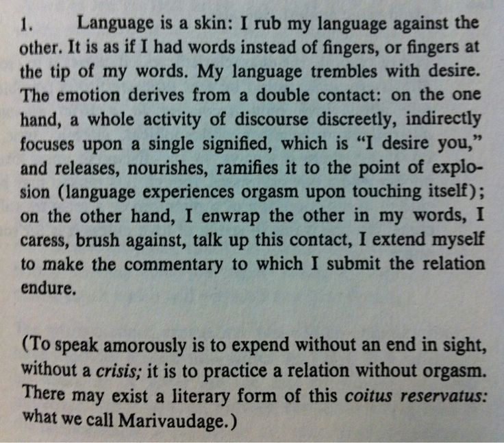 """On Barthes's """"From Work to Text"""""""