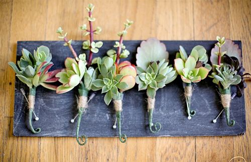 Unique Wedding Cakes Succulents Flowers | ... corsages and boutonnieres will have a modern twist with succulents