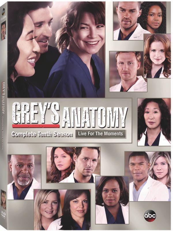 GREY'S ANATOMY Season 10 DVD Release Details   SEAT42F