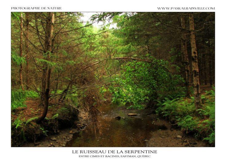 Le ruisseau de la serpentine Prise à Eastman, Québec, Canada http://www.paskalrainville.com/