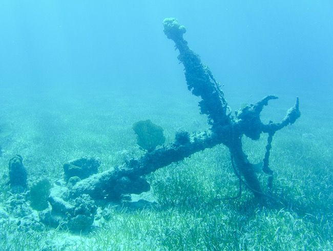 Turneffe Islands- Most folks come to Belize to explore pristine coral reefs and encounter the myriad underwater life, and are surprised when they happen upon the remnants of old freighters, ships, and more. At least, I know I was surprised.