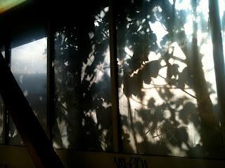 subway shadow drawings