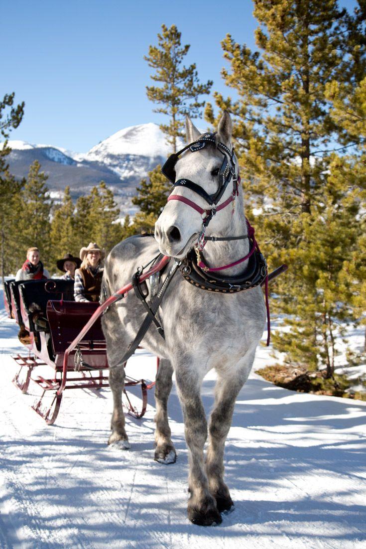 An old-fashioned sleigh ride in Breckenridge, Colorado. #breckenridge