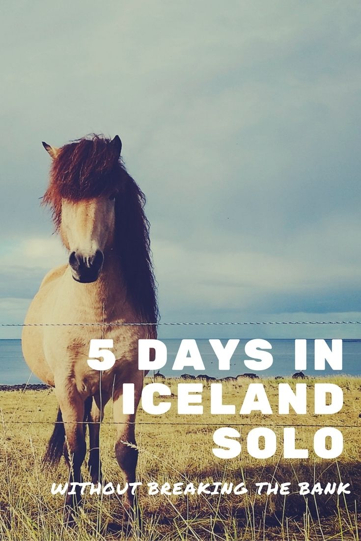 How to spend 5 days in Iceland in fall or winter solo without breaking the bank. A five day sample itinerary.