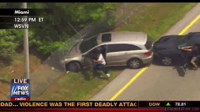 Florida Mercedes Minivan Chase Ends In Belly Flop