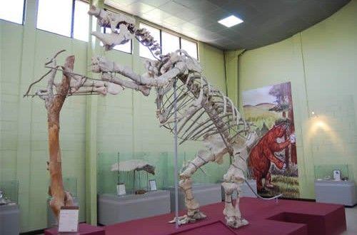 Guía Turística - Museo de Paleontología y Arqueología en Estanzuela, Zacapa   Sólo lo mejor de Guatemala
