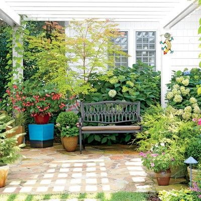 Garden Ideas North Carolina 16 best property line privacy images on pinterest | privacy trees