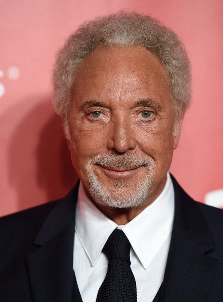 Tom Jones Photos Photos - 2015 MusiCares Person of the Year Gala honoring Bob Dylan..Los Angeles Convention Center, Los Angeles, California..February 6, 2015..Job: 150206A2..(Photo by Axelle Woussen/Bauer-Griffin)..Pictured: Tom Jones. - 2015 MusiCares Person of the Year Gala