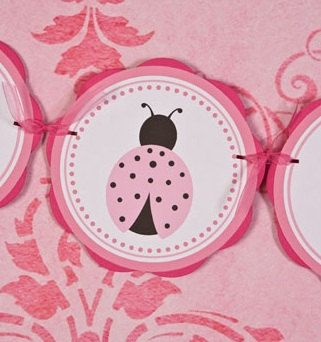 Ladybug Baby Shower Banner - IT'S A GIRL - Ladybug Theme Baby Shower Decorations in Light & Hot Pink