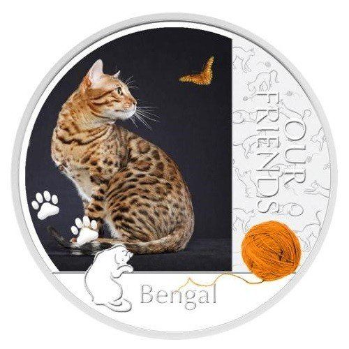 Niue 2012Our Friends Kittens  Bengal Cat  Russian Spaniel 1oz Silver Coin  2 Uncirculated * Check out this great product. (This is an affiliate link and I receive a commission for the sales)
