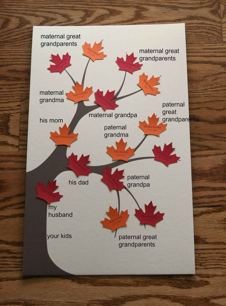 Family Tree Diagram Template For Kids