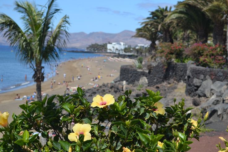 Possibly a bit overcast at first but the sunshine should be through by mid morning for a sunny day in Lanzarote. A light wind 5-15 km/h from the west. 25 degrees. Image: Puerto del Carmen Published: 20th May 2014