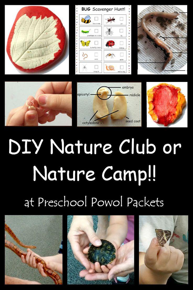 DIY Nature Club or Nature Camp   Preschool Powol Packets