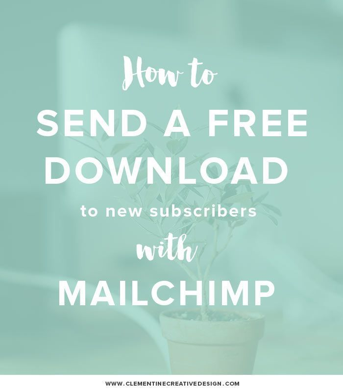 how to send a free download automatically in mailchimp