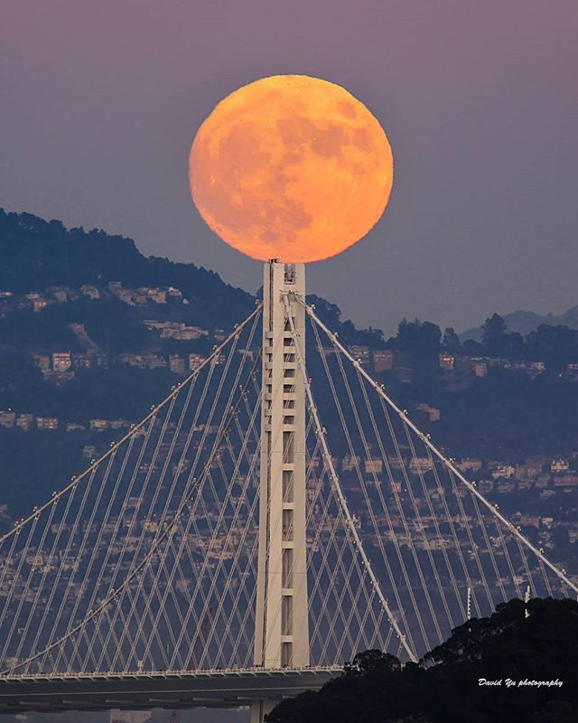 Super Moon, Bay Bridge, San Francisco                                                                                                                                                                                 More