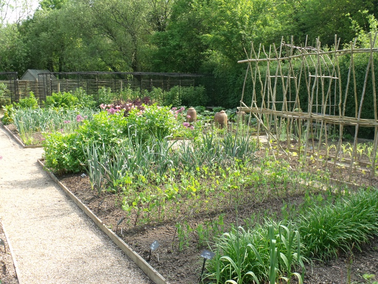 the veg garden at Perch Hill, in May