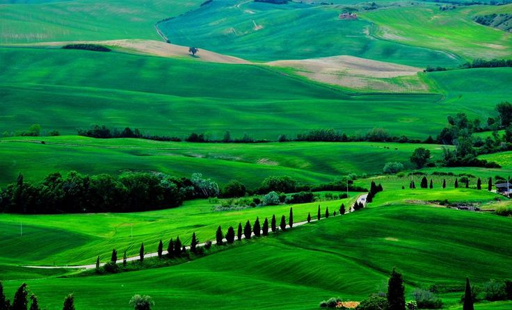 Typical tuscan countryside near #Siena #tuscany