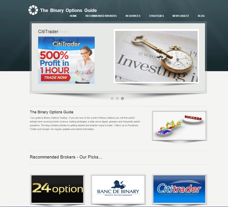 Www the binary options guide com
