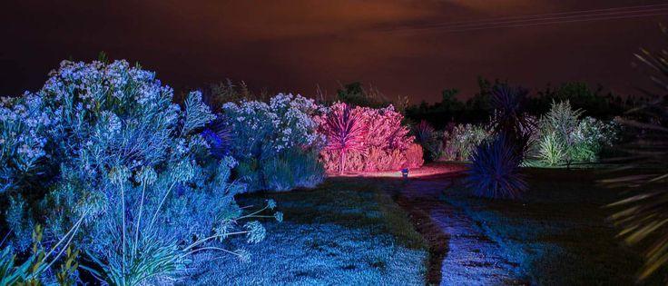 Iluminaciòn LED en una parcela para eventos en Peñaflor organizado por Masferrer producciones