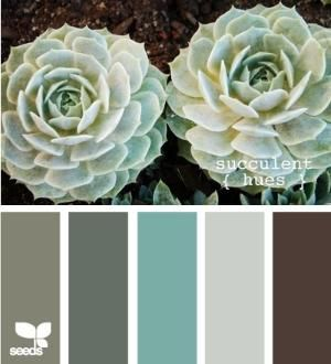 Soft teal, brown, and grey color scheme. green brown grey  aqua  sea foam...absolutely love the colors here, mixed with a little ivory/white!  I'm thinking about aqua, light gray, brown and ivory/white. by alyce