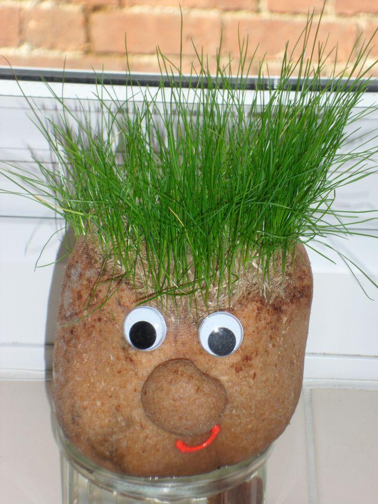 We always make a Mr Grasshead every year