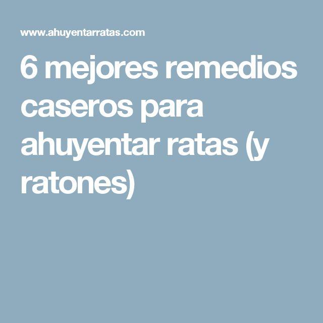 6 mejores remedios caseros para ahuyentar ratas (y ratones)
