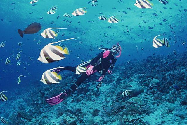 宮古島の美しい海を満喫できる!おすすめアクティビティ   たびらい
