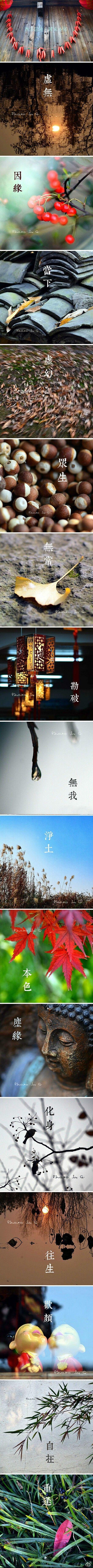 浙江杭州西溪湿地美景