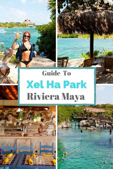 Xel-Ha Park near Cancun, Mexico is a snorkeling paradise but there's so much more to do than look at beautiful fish. To make the most of all the fun and food it's a good idea to have a game plan. We've created this Guide to Xel Ha with several itineraries to choose from depending on what you like to do the most. via @livedreamdiscov