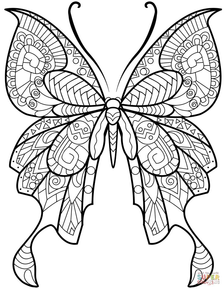 zentangle butterfly  super coloring  butterfly pictures