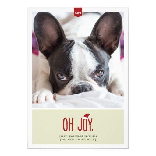 愛犬の写真でオリジナルのクリスマスカードを。