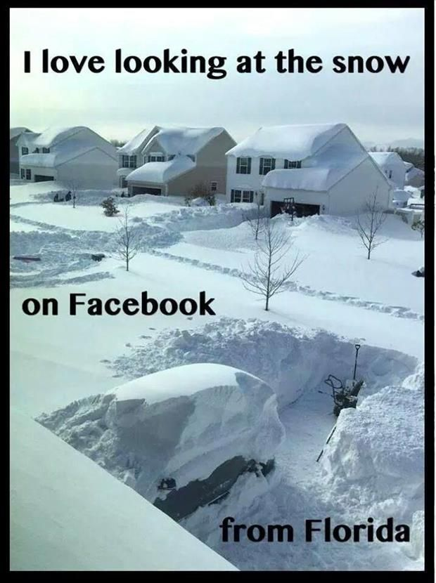 funny snow storm wallpaper - photo #40