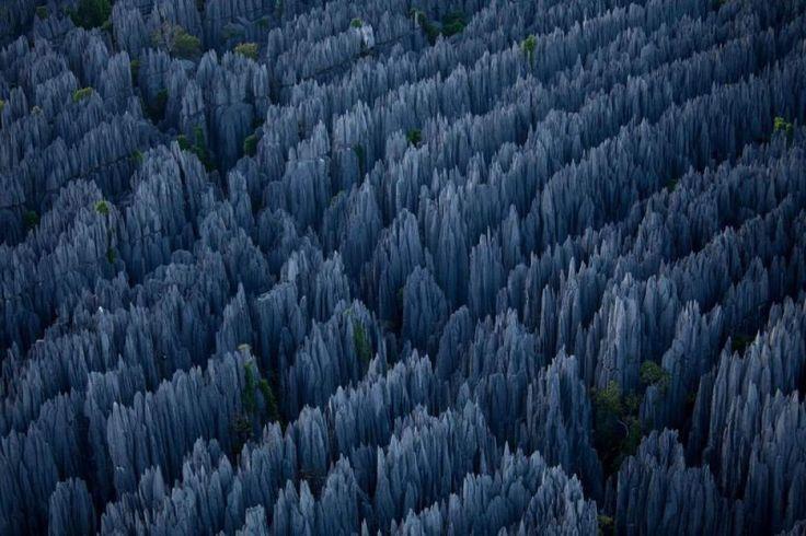 Stunning Stone Forest of MadagascarDe Bemaraha, Rocks Formations, National Parks, Stones Forests, Places, Amazing Nature, Stoneforest, Madagascar, China