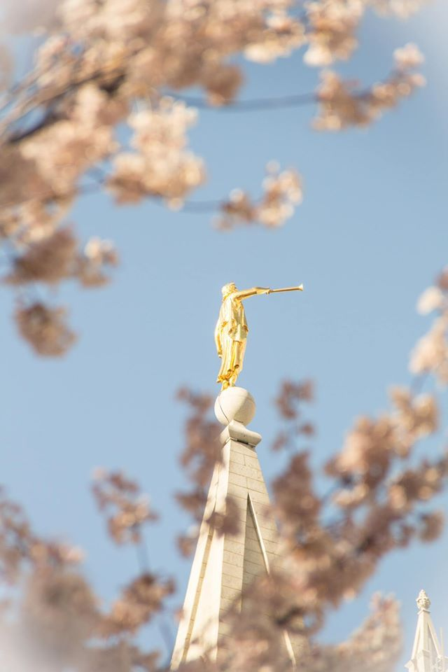 """""""The angel Moroni stand[s] atop the temple http://facebook.com/163927770338391 as a shining symbol of [our] faith. In a degenerate society, he remained pure and true. He is my hero. He stood alone. He stands today, beckoning us to have courage, to remember who we are, to 'arise and shine forth,' to [live] above the worldly clamor and to, as Isaiah prophesied, 'Come to the mountain of the Lord'—the holy temple."""" –Elaine S. Dalton"""