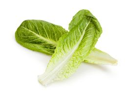 Romaine Lettuce Nutrition Facts