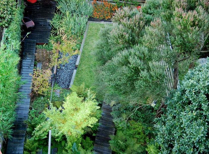 Q&A with Marcel Wilson of Bionic Landscape Architecture / Steel, wood and soil salvaged from construction waste are reinvented into a lawn with a deck that extends above the wetland in this San Francisco home.